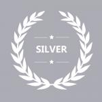 Silver Treasure Trove Firework Package